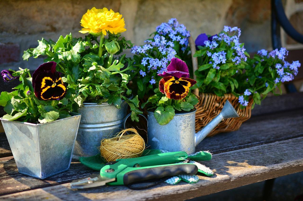 Der Garten Im Marz Lokallust Das Stadtmagazin